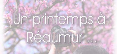 C'est le printemps – Nouveau concours photo